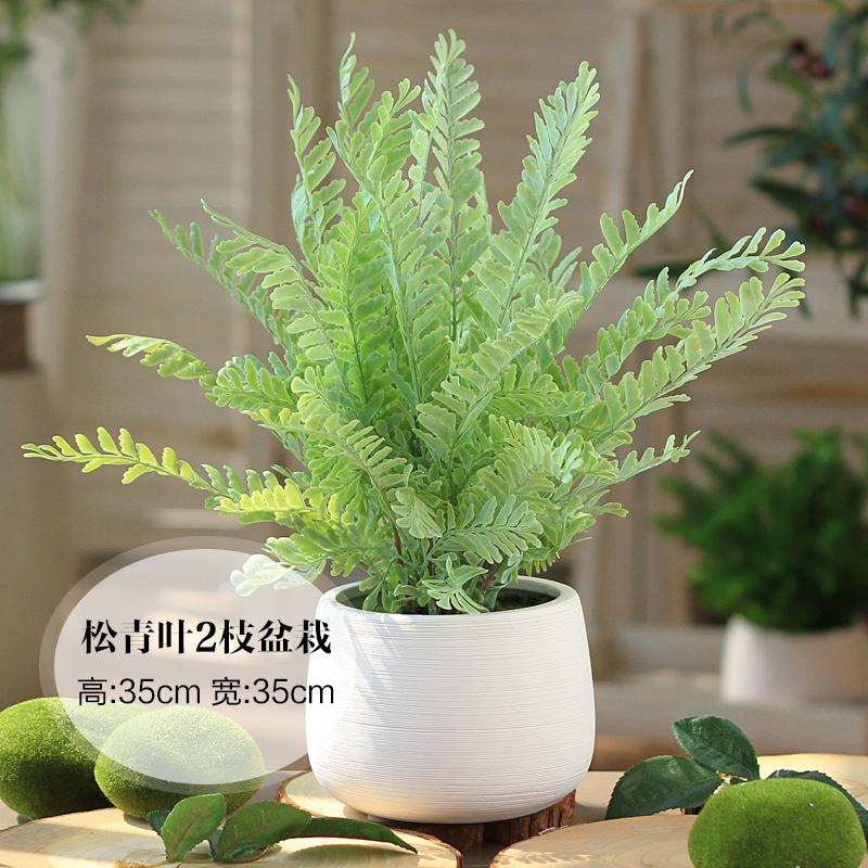 Цвет: Свободный зеленый лист 2 веточки комнатных растений
