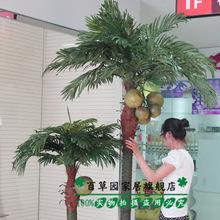 大型仿真植物仿真树商场落地摆放假树绿植盆栽装饰 夏威夷椰子树