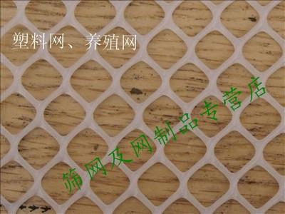 塑料平网 养殖网 塑料网养鸡养鸭养鹅网 防护网 纯料*1.2cm孔*2m