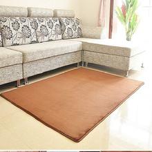可水洗 不掉色 珊瑚绒地毯卧室地毯客厅茶几地毯床边地毯
