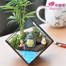 苔藓 微景观 植物生态瓶办公桌多肉摆件绿植物diy创意小盆景礼物