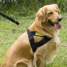 宠物狗狗牵引绳 大型犬中型犬狗绳子狗链子 金毛德牧胸背带狗链