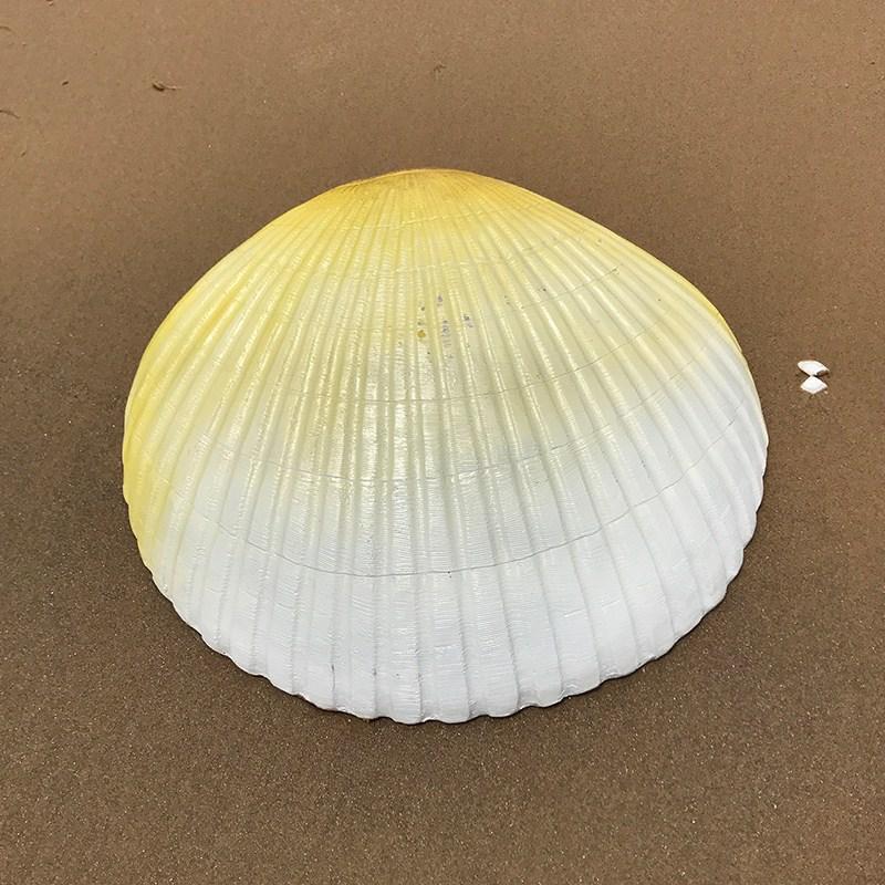 모래 해양 장식 모의 큰 소라 껍데기 거북이 유리강 동물조각 장식품 공원 공예품