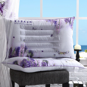 决明子明目磁疗保健枕荞麦枕头薰衣草助睡眠单人枕芯 买一对拍2个