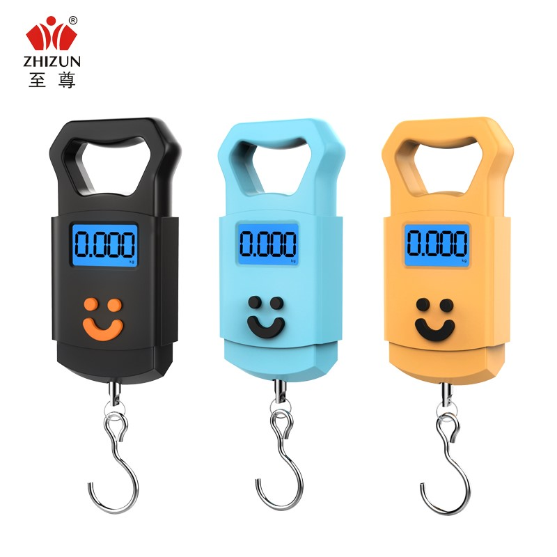 Mini electronic weighing said portable electronic scale 50kg portable high-precision express said spring balance