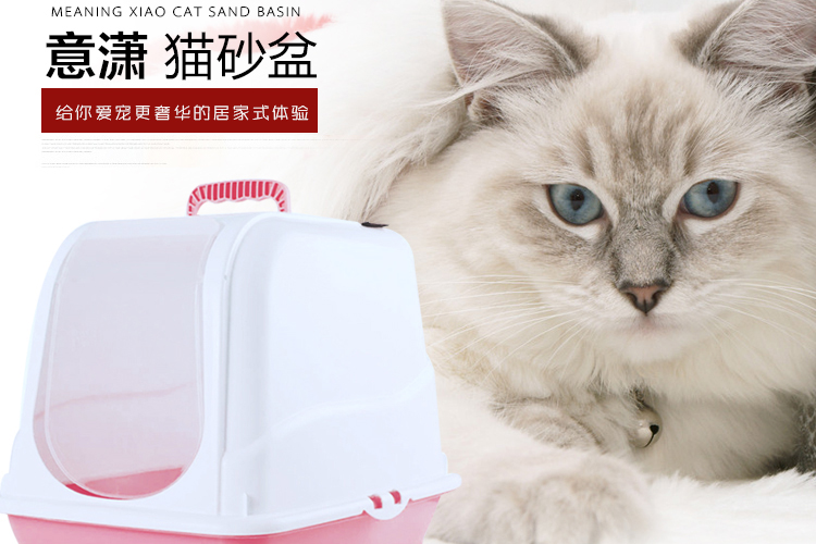 best enzymatic cleaner for cat pee