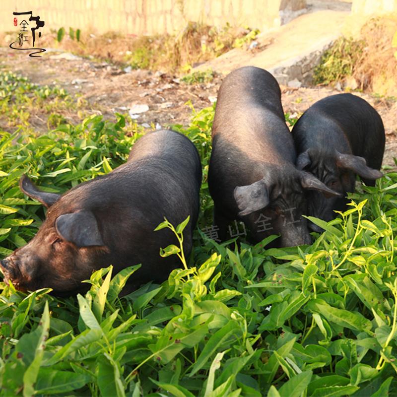 The backyard farm soil Black Pork stocking fresh pork pork pork soil 500g