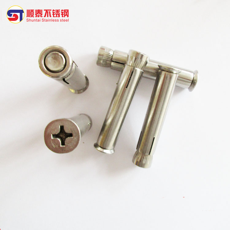 Expansion screw / internal expansion bolt / countersunk head expansion /M12 of 201 stainless steel cross countersunk head