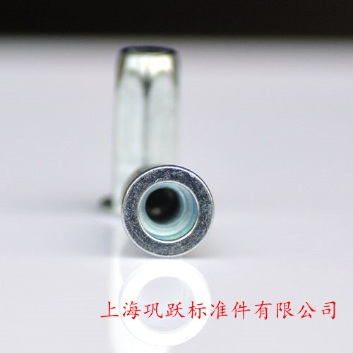 Blue and white zinc flat head, full six angle blind hole rivet nut, long flat head, six square closed waterproof pull cap 6*23