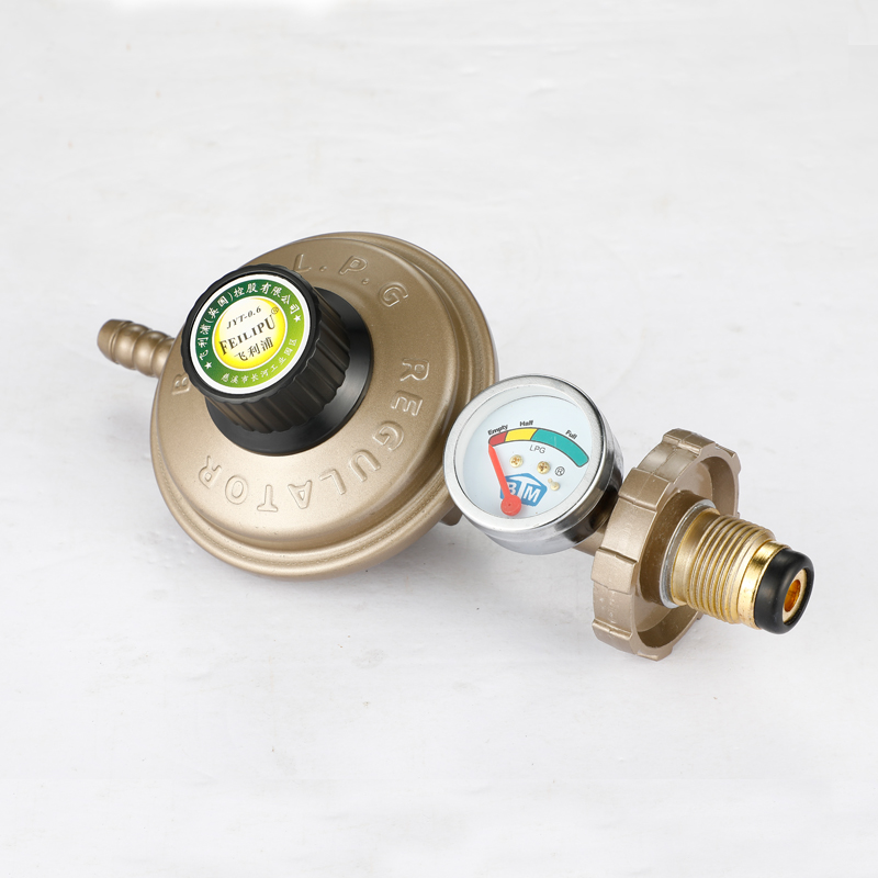 Domestic liquefied petroleum gas pressure reducing valve, water heater, gas valve, double head table adjustable valve, gas cooker, low gas tank