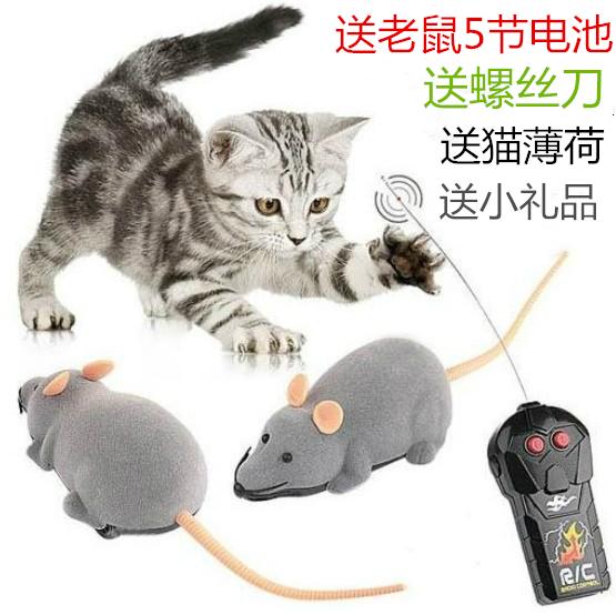 ασύρματο τηλεχειριστήριο τη γάτα ποντίκι τραπεζίτη ηλεκτρικό τη γάτα και το ποντίκι παιχνίδια ηλεκτρονικών παιχνιδιών ποντίκι ποντίκι γάτα γάτα