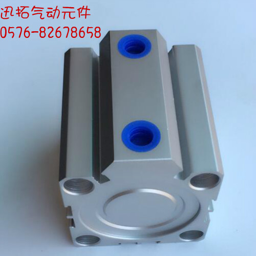 IL tipo di posto di SDA40x40SDA40x50SDA40x50SDA40x100 de ospite il Cilindro.