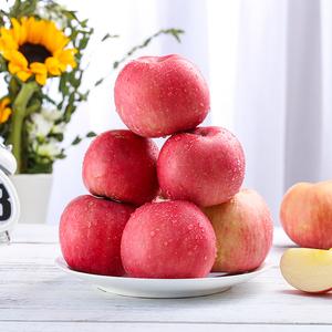苹果10斤新鲜水果脆甜陕西嘎啦非冰糖心非红富应季水果小苹果多汁