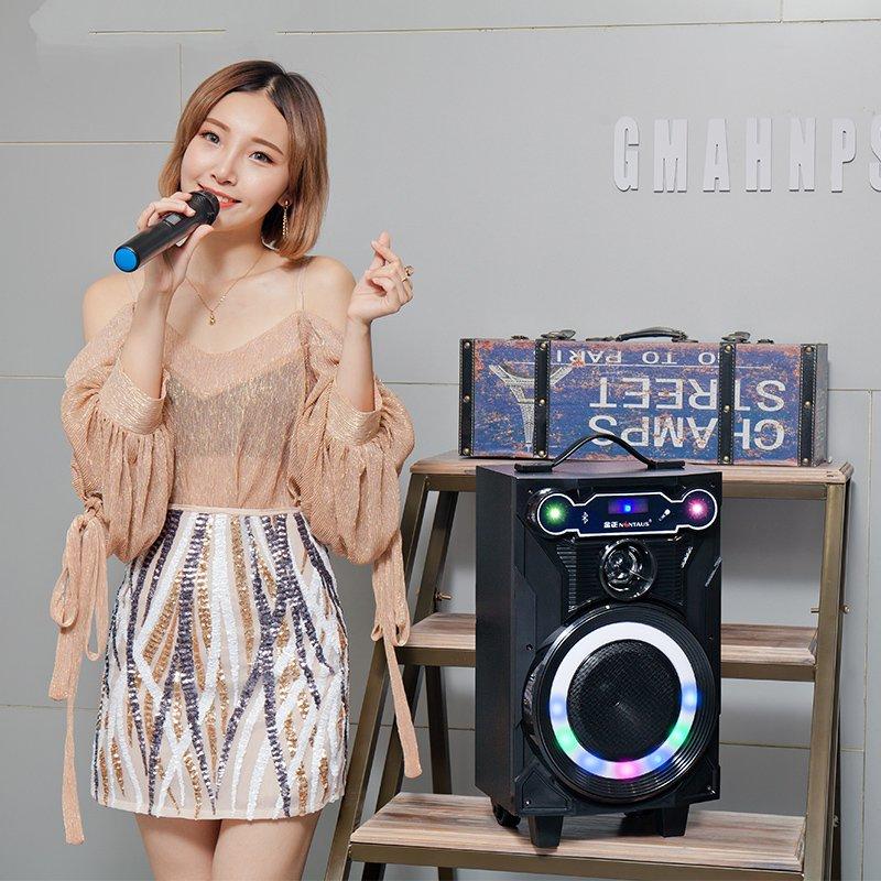 Klasse 8 - Zoll - kanone der Square dance hochleistungs - karte mobile niedrigen stall MIT drahtlosen mikrofon drahtlose bluetooth - box