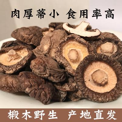 新货庆元椴木香菇干货500g散装特级干小香菇 野生农家特产金钱菇