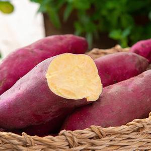 8月现挖新鲜临安天目山小香薯5斤农家小红薯黄心番薯板栗地瓜包邮
