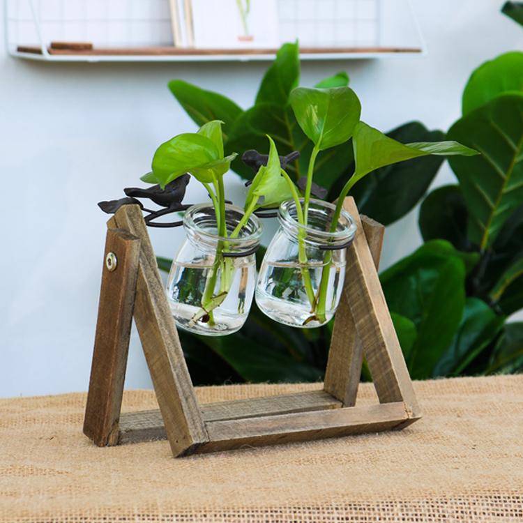 新款單頭-水培擺件創意客廳桌面裝飾餐桌插花容器透明水培玻璃瓶辦公桌面擺件裝飾品