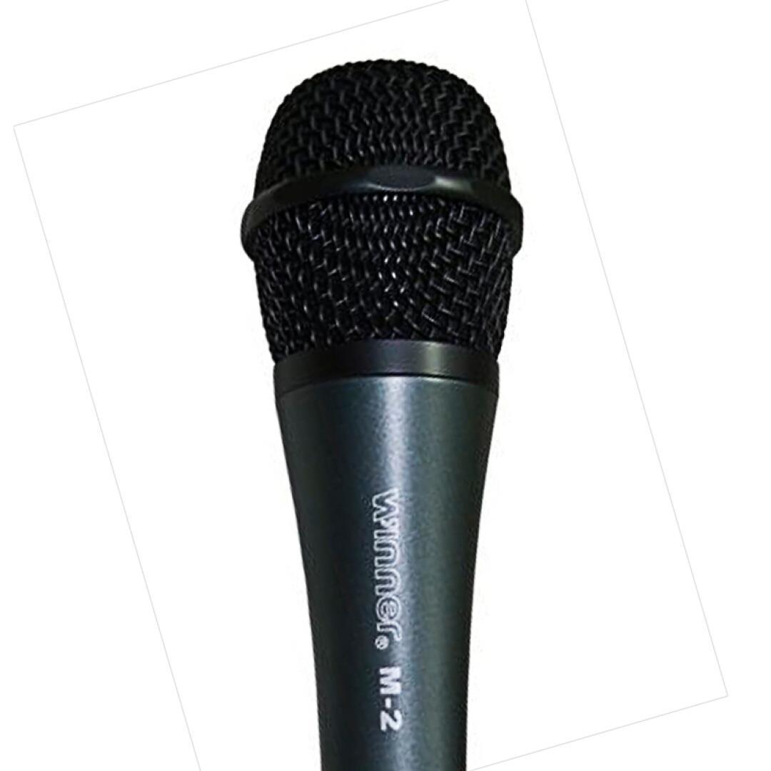Tianyi (Winner) M2 großen mikrofon karaoke Singen karaoke - Familie audioverstärker werden