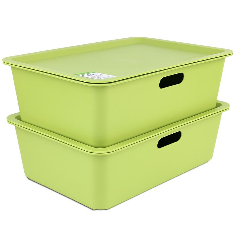 茶花收纳盒方形储物2支装 小药盒子28889L其他收纳盒
