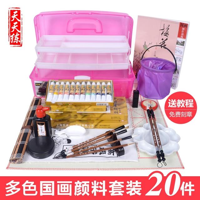 La scatola introduttiva meticolosa calligrafia di pigmento di Colore dipinto Paesaggio dipinto una serie di 24 Set di strumenti per i dipinti degli studenti