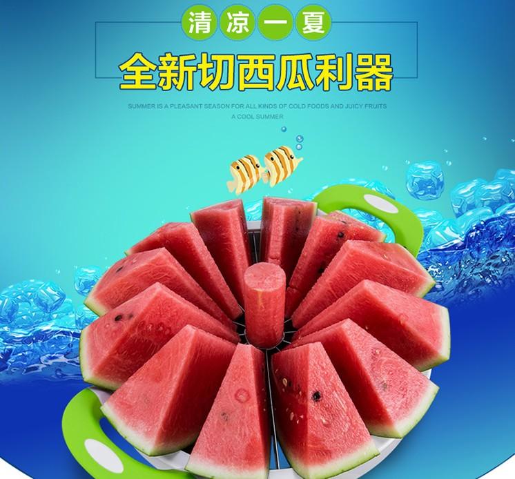 Die ananas - Maschine Obst Cutter früchte ananas MIT Apple Schneiden Griff segmentierung