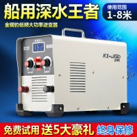 Power conversion booster diamond leopard 12V super power inverter deep head dual-purpose electronic package