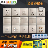 Bull/ bulls champagne gold switch socket plug 5 home 10A five hole socket wall switch panel