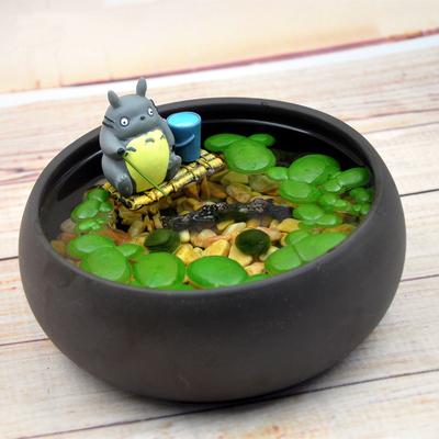 幸福海藻球水培植物微景观生态瓶办公室小盆栽创意DIY小鱼缸浮萍