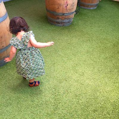 (现货包邮)TTBBYC童装女童复古风重工印花草莓小鸟宝宝裙子女宝