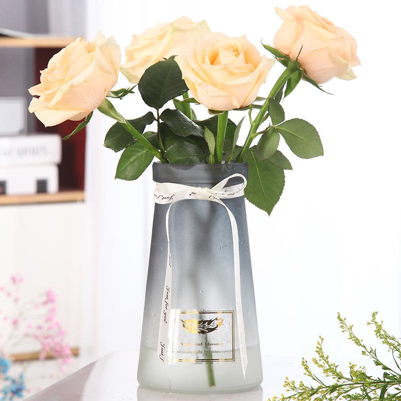 玻璃花瓶摆件现代简约客厅透明水培插花瓶北欧式餐桌装饰创意花瓶(非品牌)