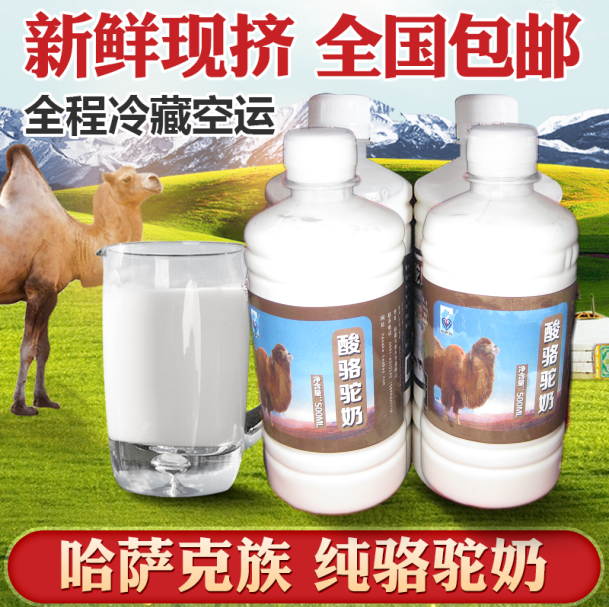 2000 g xinjiang camel milk, pure milk 4 jins camel yogurt package mail herdsmen grassland straight motion for rich nutrition