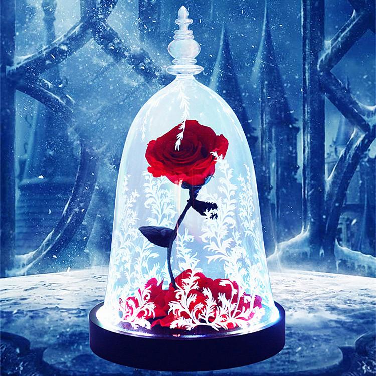美女与野兽玫瑰永生花,送女友生日礼物