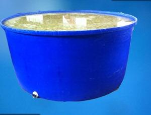 Nhà sản xuất cung cấp thùng nhựa 1200L thùng nhựa đựng thức ăn 1,2 tấn M thùng chứa nước ngâm thùng đựng hóa chất - Thiết bị nước / Bình chứa nước