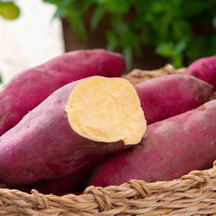 5斤40-60个左右临安小香薯小番薯