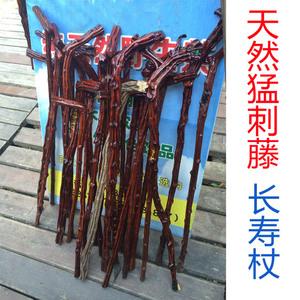 Xianciqi gỗ ông già stick bold mây tự nhiên rắn gỗ mía ngoài trời trekking ba lan gậy cũ đi bộ dính mía