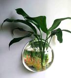 Человек ЭКО ведро аквариум акриловый круглый творческий настенный аквариум Аквариум висит Небольшая гостиная стены На