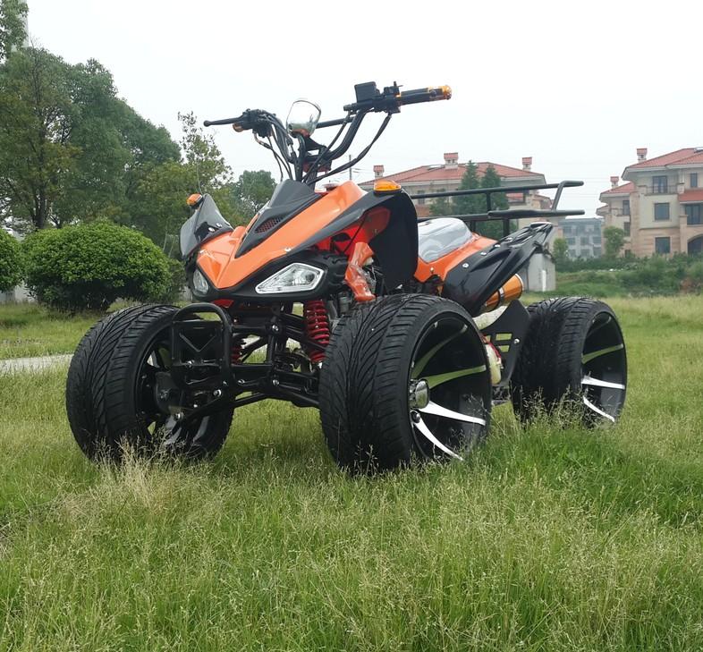 Bốn bánh bãi biển motocross điện Mars nhỏ ATV xe đạp leo núi trang web xe ATV tất cả địa hình