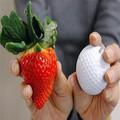 草莓苗 盆栽地栽草莓苗 攀援草莓苗爬藤草莓当年结果包邮四季草莓