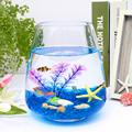 迷你小鱼缸椭圆形玻璃金鱼缸时尚创意桌面茶几生态鱼缸水培花瓶