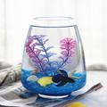 包邮 斗鱼缸 玻璃鱼缸 孔雀鱼缸 热带观赏鱼缸 办公室桌面鱼缸