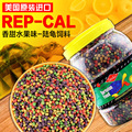 原装进口REP-CAL水果味陆龟粮 豹龟星龟红腿苏卡达陆龟饲料100g克