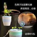 爬虫宠物饲养箱陆龟加湿器高冠变色龙雾化器增湿超静音自动断电
