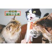 Nhà Mèo Sốt Con Chó Màu Đỏ Kem Dinh Dưỡng 120 gam Mèo Tha Mồi Vàng Dog Dinh Dưỡng Dinh Dưỡng Cat Puppy Pet Chăm Sóc Sức Khỏe