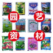 Orchid gia đình đặc biệt nguồn cung cấp vườn Jianlan Molan Lan Lan Chunlan trong nhà trong chậu hoa và cây